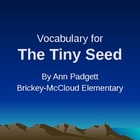 2nd Grade Treasures Vocabulary Powerpoint for The Tiny Seed