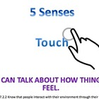 5 Senses Powerpoint