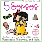 5 Senses {informational reading and exploration}