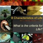 Foldable 8 Characteristics of Life