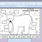 A+ Polar Bear: Label The Polar Bear