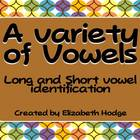 A Variety of Vowels- Short and Long Vowels