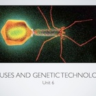 AP Bio Viruses and Genetic Technology (Flipped Classroom)(