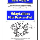 Adaptations: Bird Beaks and Feet