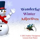 Adjectives: Wonderful Winter Adjectives