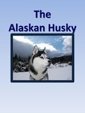 Alaskan Huskies Mini Book