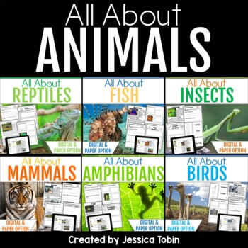 All About Animals (Nonfiction BUNDLE)
