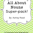 All About Nouns Super Pack!  A Common Core Noun Unit for 1-3