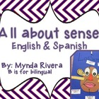 All about Senses (English & Spanish)