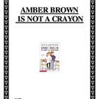 Amber is Not a Crayon Story Questions
