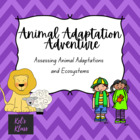 Animal Adaptation Adventure