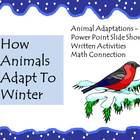 Animal Adaptations: How Animals Adapt To Winter