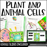 Animal Cells and Plant Cells Packet *Quiz, Activity, & Stu