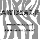 Animal PDF PowerPoint