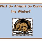 Animals in the Winter: Migration, Adaptation, and Hibernation