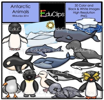 Antarctic Animals Clip Art Bundle