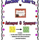 Antonyms & Synonyms Anchor Chart