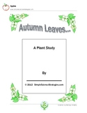 Autumn Leaves: A Plant Study