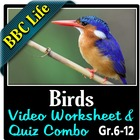 BBC Life - Birds Episode - Video Questions Worksheet & Vid
