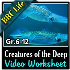 BBC Life - Creatures of the Deep Episode - Video Questions