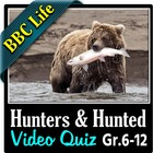 BBC Life - Hunters and Hunted Episode - Video Quiz