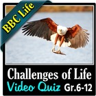 BBC Life - The Challenges of Life Episode - Video Quiz
