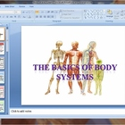 Basics of body systems