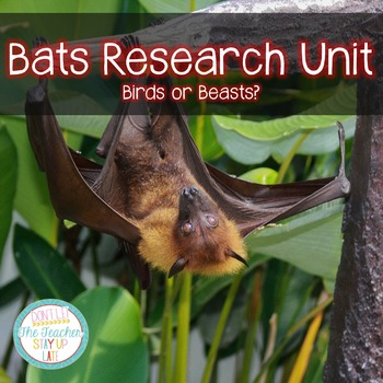 Bats Research Unit