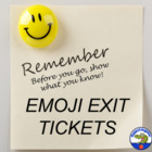 Before You Go - Show What You Know Summarizer Activity Ticket Out