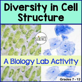 Biology Lab:  Diversity of Cell Structure (Cell Organelles)