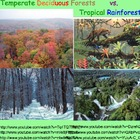 Biomes: Temperate Forest & Tropical Rainforest - Lesson Pr