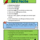Bird Facts Handout