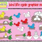 Bird Life Cycle -  Graphics for Commercial Use