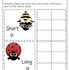 Birds & Bugs Springtime Short A & Long A Write the Room