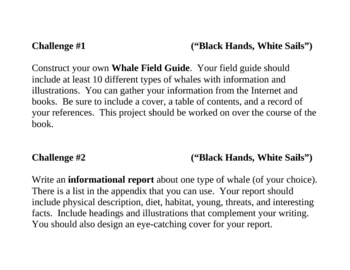 Black Hands, White Sails, by P. McKissack, Project Challenges