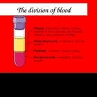 Blood Powerpoint (Circulatory System)