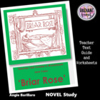 Briar Rose-Jane Yolen Teacher Text Guides & Worksheets