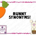 Bunny Synonyms!