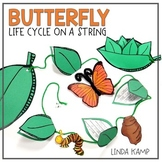 Butterfly Life Cycle On A String Craftivity