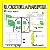 Butterfly Life Cycle in Spanish  (Flashcards, song & more)