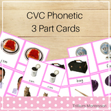 CVC Phonetic Reading Cards