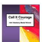 Call It Courage     A Novel Teaching Pack