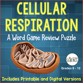 Cellular Respiration Word Game Review: Glycolysis, Krebs, Electron Trasnsport