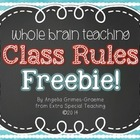 Chalkboard Whole Brain Teaching Class Rules - FREEBIE!