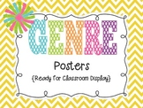 Chevron Genre Posters for Classroom Display