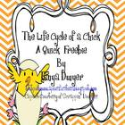 Chicken Life Cycle Quick Write Freebie