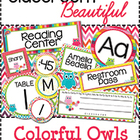 Classroom Beautiful: Colorful Owls {editable}