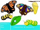 Clipart: Caterpillar and Butterfly