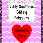 Common Core Daily Language Sentence Editing: February