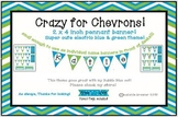 Crazy for chevrons! Add on! Tiny pennant! Perfect for name